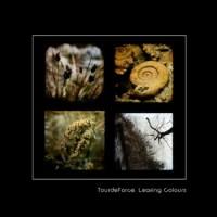 Remixalbum från TourdeForce