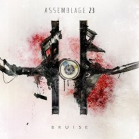 """Assemblage 23 – """"Bruise"""""""