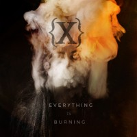 "IAMX – ""Everything is Burning (Metanoia Addendum)"""