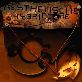 aesthetische_hybridcore