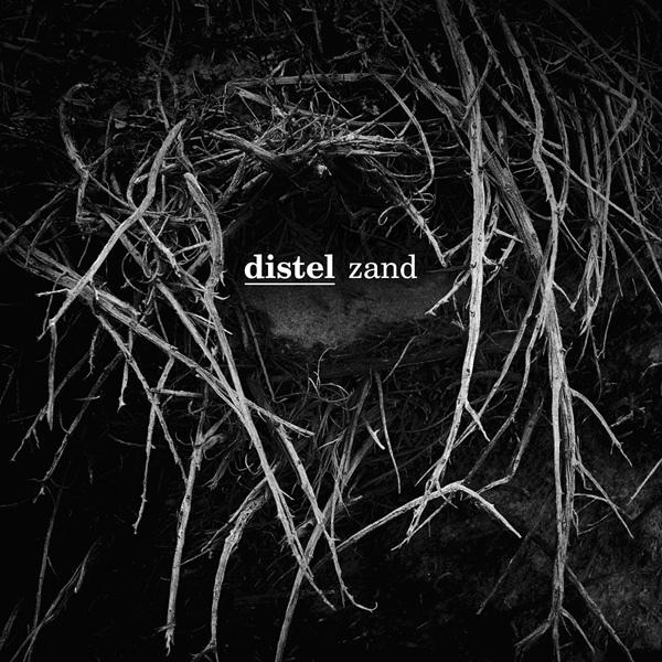 distel_zand