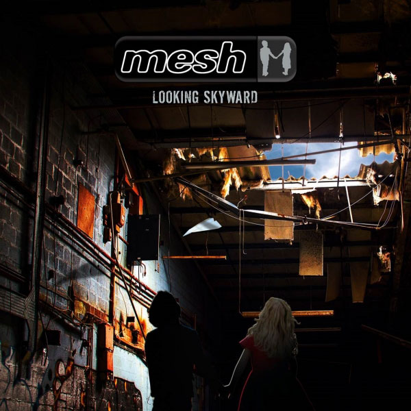 mesh_looking_skyward