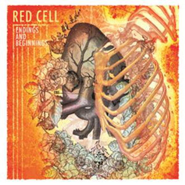 red_cell_endings_and_beginnings