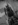 Aux Animaux-1286