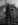 Aux Animaux-1446