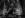 Leaether Strip-7034